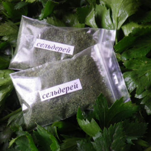 Сельдерей, зелень
