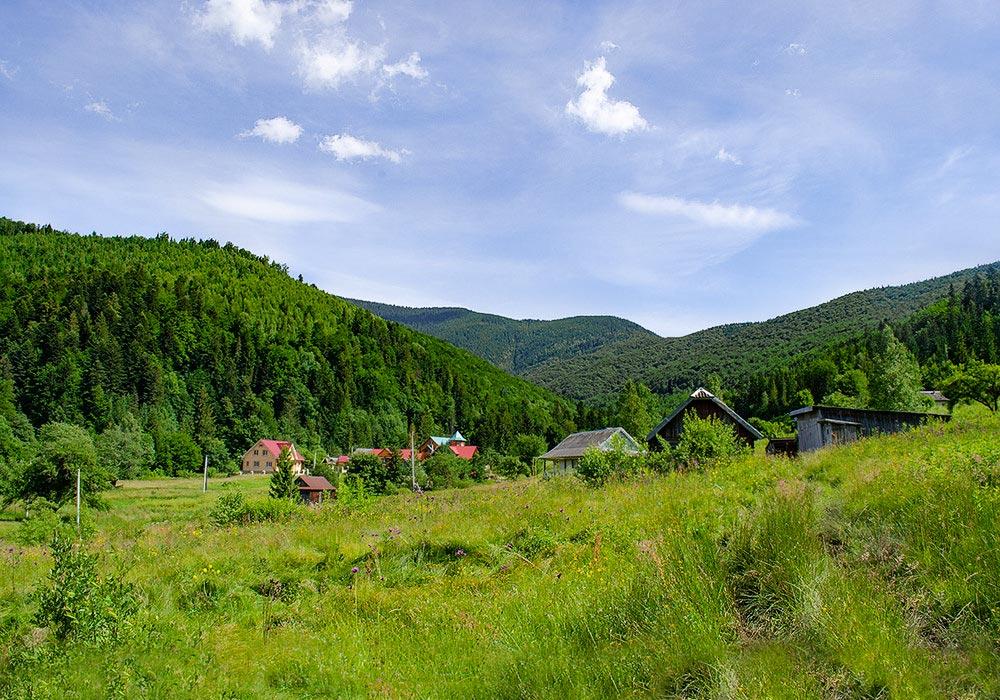 лето 2020 Семинар — практикум Натальи Кобзарь со сбором трав, Карпаты