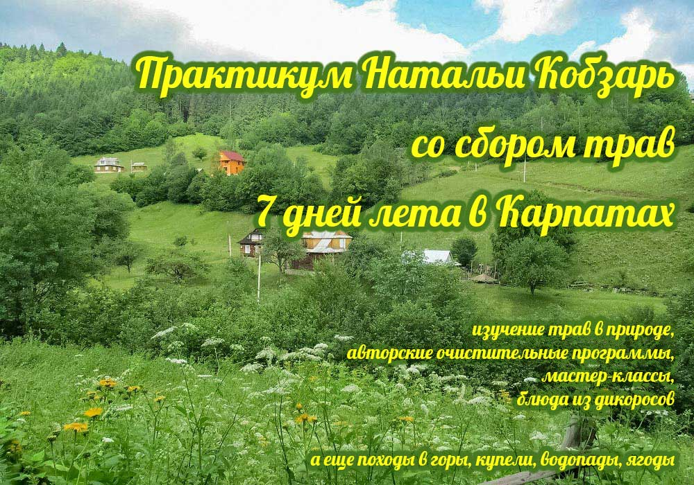 3-10.07.2021 Семинар — практикум Натальи Кобзарь со сбором трав, Карпаты
